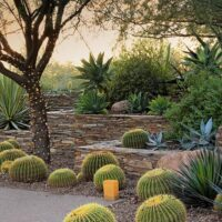 Landscaping Ideas That Are Kind To The Environment